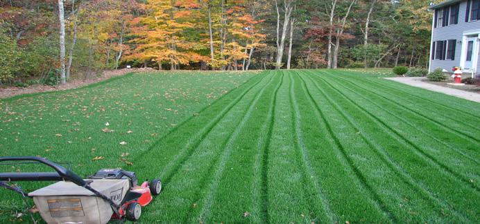 Hydro Seeding Professional In Rhode Island Always Green
